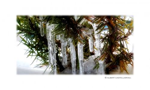 invierno2015